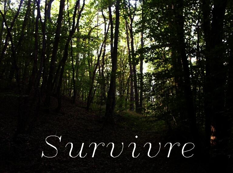 Couverture de Survivre